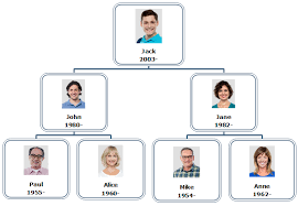 How To Create Family Tree Diagrams With Org Chart Software