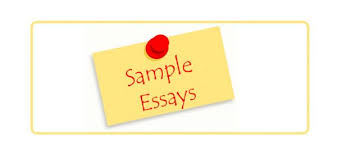 public relations archives essay writing help sample essay on managing organizational culture and change