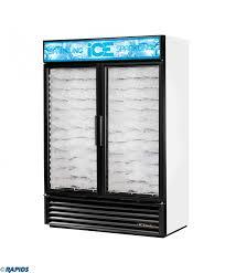 true gdim 49nt 2 door ice merchandiser freezer