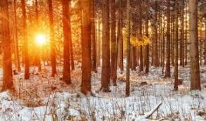 Winter 2017 hundertjähriger kalender
