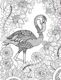 Free Printable Adult Coloring Page Of Pink Flamingo Bird Coloring