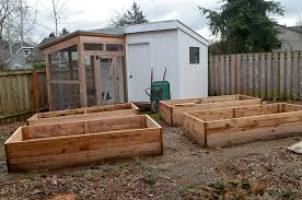 building garden beds. raised-beds building garden beds n