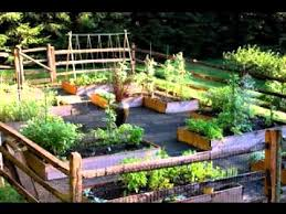 Small Picture Small Vegetable Garden Ideas The Garden Inspirations