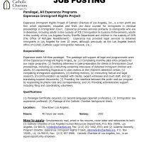 Litigation Attorney Resume Tomyumtumweb Com