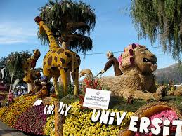 Rose Bowl Float Decorating Rules Rose Parade Get Involved Cal Poly 90