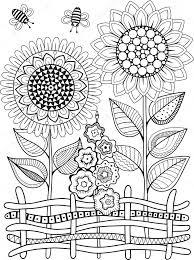 Vettore Girasole Da Disegnare Girasoli Di Doodle Di Vettore Libro