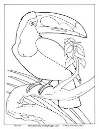 Small Picture Realistic Wild Animal Coloring Pages Coloring Coloring Pages