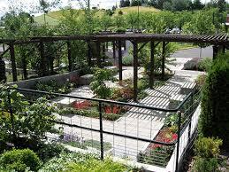 garden shade. The Shade Garden From Wilson Rd A