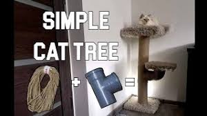 cat scratching post with pvc pipes