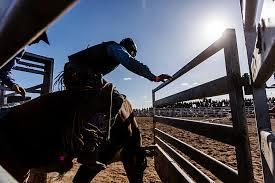 Owensboro Sportscenter Seating Chart Man Vs Bull Pro Bull Riding At Owensboro Sportscenter Video
