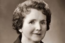 rachel carson biography environmentalist author