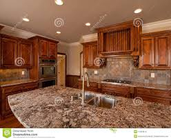 Dark Wood Kitchen Luxury Home Dark Wood Kitchen With Countertop Stock Images Image