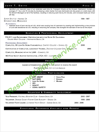 Resume Editing Service Professional Resume Templates