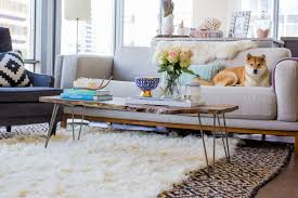 dog on couch in contemporary living room with faux fur rug nonagon style