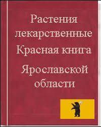 Растения из красной книги Ярославской области Растения занесенные в Красную книгу Ярославской области
