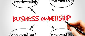 Business Ownership Types Types Of Business Ownerships Structures Meridian Po Finance