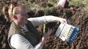 Soil Profiling Color