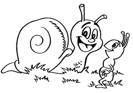 Small Picture snail coloring pages 5 funnycrafts