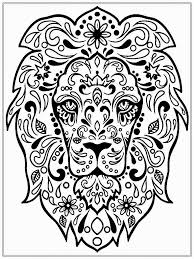 Small Picture Adult coloring pages lion face ColoringStar