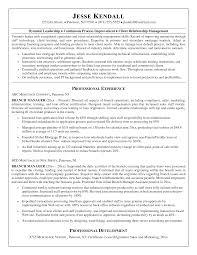 100 Retail Banking Resume Example Bank Customer Service