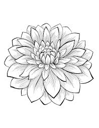 Dahliaa Partir De La Galerie Fleurs Et Vegetation Tatouage