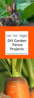 vegetables garden fence ideas for protection. DIY Garden Fence Ideas - Protect Your Harvest   Fencing, Fences And Gardens Vegetables For Protection E