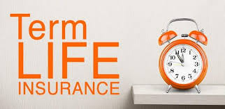 Term Life Insurance Quotes Car Insurance In Texas Inspiration Term Life Ins Quote