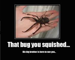 Animal Memes – That bug you squished   Funny Memes   We Heart It ... via Relatably.com