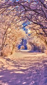 winter wallpaper for iphone 6. Delighful Wallpaper Winter Snow Trees Road Wallpaper For Iphone For Iphone 6 N