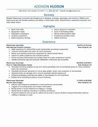 Warehouse Job Description For Resume Elegant It Professional