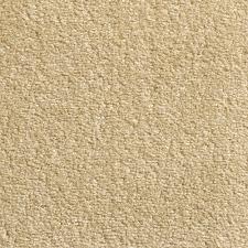 cream carpet texture. Cream Carpet Texture