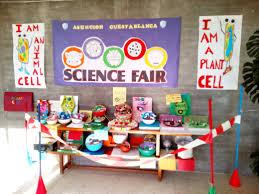 Proyecto De Ciencias Proyecto Fin De Trimestre Science 5 Y 6