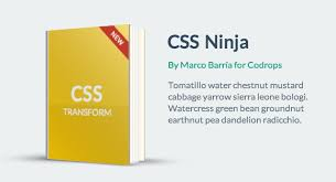 Animated Books With Css 3d Transforms
