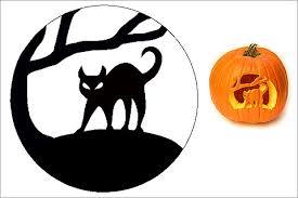 Cat Jack O Lantern Pattern
