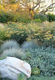 Small Picture Dry Garden Palos Verdes Contemporary Landscape Los Angeles