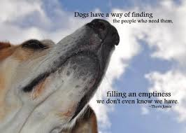 Dog Passing Quotes Cool Quotes About Loss Of Dog On QuotesTopics