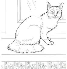 Fat Cat Coloring Pages Warrior Cat Coloring Pages Printable Cat Fat