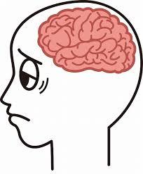 「脳梗塞と脳血栓」の画像検索結果