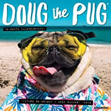 Pug Gifts for Pug Lovers - Amazon.com