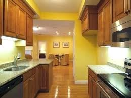 What Color To Paint Kitchen With Dark Cabinets Best Inspiration