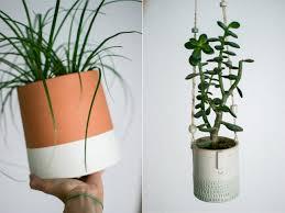 urban jungle bloggers, plant pots, planters, creative planters, creative  plant pots,