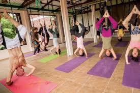 7 day 50 hour aerial yoga teacher in bali