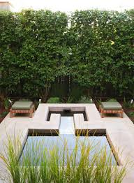 Outdoors:Modern Patio With Small Pool And Bench Seats Also Italian  Buckthorn Garden Fence Modern
