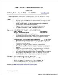 doc examples of professional resumes professional resume sample resume format for experienced it professionals