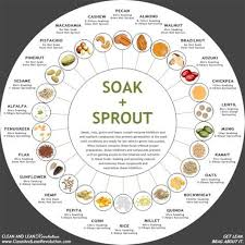 Soak And Sprout Chart Soak Sprout Chart Growing Seedlings Growing Sprouts