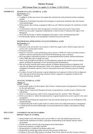Analyst Internal Audit Resume Samples Velvet Jobs