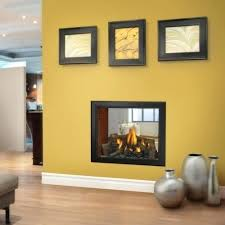 double sided gas fireplace insert alternative views