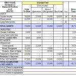 Non Profit Balance Sheet Template Excel Balance Sheet 18 Free Word ...
