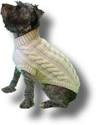 Free Knitted Dog Sweater Patterns Inspiration Free Knitting Patterns For Preemie Babies Ipaa For
