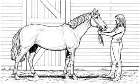Woman And Mare Horse Coloring Page Free Printable Coloring Pages
